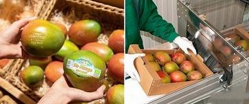 奥地利Spar推出激光打标芒果新品牌